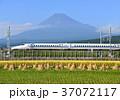 富士山 山 水田の写真 37072117