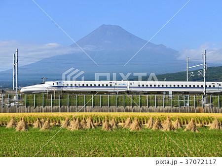新幹線と富士山-5516 37072117
