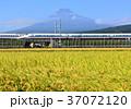 富士山 山 水田の写真 37072120