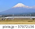 富士山 新幹線 東海道新幹線の写真 37072136