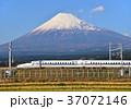 富士山 新幹線 東海道新幹線の写真 37072146