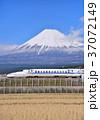 富士山 山 新幹線の写真 37072149