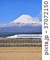 風景 富士山 山の写真 37072150