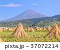 富士山 富士市 秋の写真 37072214