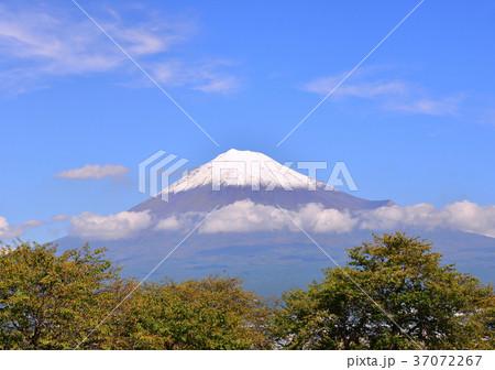 秋の富士山-4780 37072267