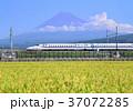 風景 富士山 水田の写真 37072285