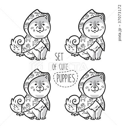 Set of ink siberian husky puppies in raincoats 37073172