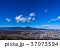 住宅街 快晴 平塚の写真 37073594
