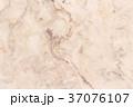 大理石 ホワイト 白の写真 37076107