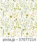 フローラル パターン 柄のイラスト 37077214
