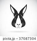うさぎ ウサギ 兎のイラスト 37087304