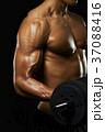 筋肉 マッスル 男性の写真 37088416