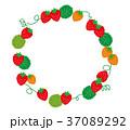 フレーム 枠 苺のイラスト 37089292