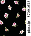 Seamless summer pattern with watercolor flowers 37091638