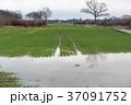 Farmers flooded field 37091752