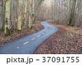 Winding cycle lane 37091755