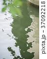 緑と川 37092218
