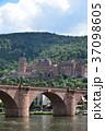 ハイデルベルク城 ハイデルベルク ドイツの写真 37098605