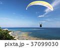 ハンググライダー体験 沖縄 知念岬公園 37099030