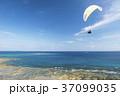 ハンググライダー体験 沖縄 知念岬公園 37099035