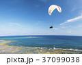 ハンググライダー体験 沖縄 知念岬公園 37099038
