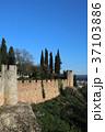 トマール 城壁 建物の写真 37103886