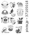 ベジタリアン 食 料理のイラスト 37105018