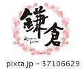 鎌倉 筆文字 桜 フレーム 37106629