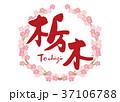 栃木 筆文字 桜 フレーム 37106788