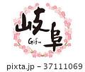 岐阜 筆文字 桜のイラスト 37111069
