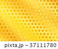 金色 銀色 模様のイラスト 37111780