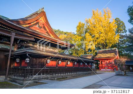京都 秋の北野天満宮 37112817