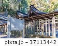 武田八幡宮、武田八幡神社、本殿 37113442