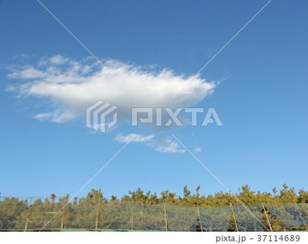 稲毛海岸の青空と白い雲 37114689