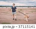 わんこ 犬 ペットの写真 37115141