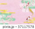 鯉 桜 和のイラスト 37117578
