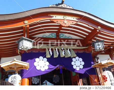 正月の稲毛浅間神社の本殿 37120466