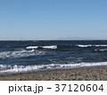 稲毛海岸の白い波と砂浜 37120604