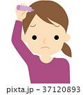女性 ヘアケア 髪のイラスト 37120893