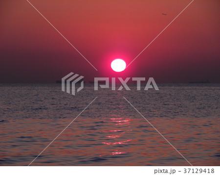 稲毛海岸に沈む夕日 37129418