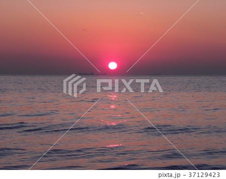 稲毛海岸に沈む夕日 37129423