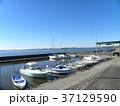 霞ヶ浦のヨットとボートの係留地 37129590