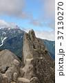 イルカ岩 37130270