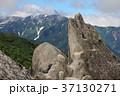 イルカ岩 37130271