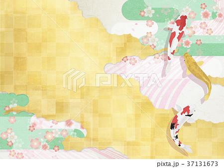 和モダンなイラスト(桜吹雪、金屏風、鯉) 37131673