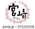 宮崎 筆文字 桜 フレーム 37133536