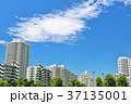 青空 夏 マンションの写真 37135001