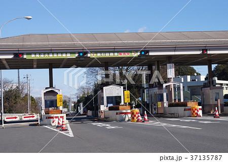 新見沼大橋有料道路 37135787