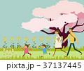 家族 桜 春のイラスト 37137445