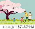 家族 桜 春のイラスト 37137448
